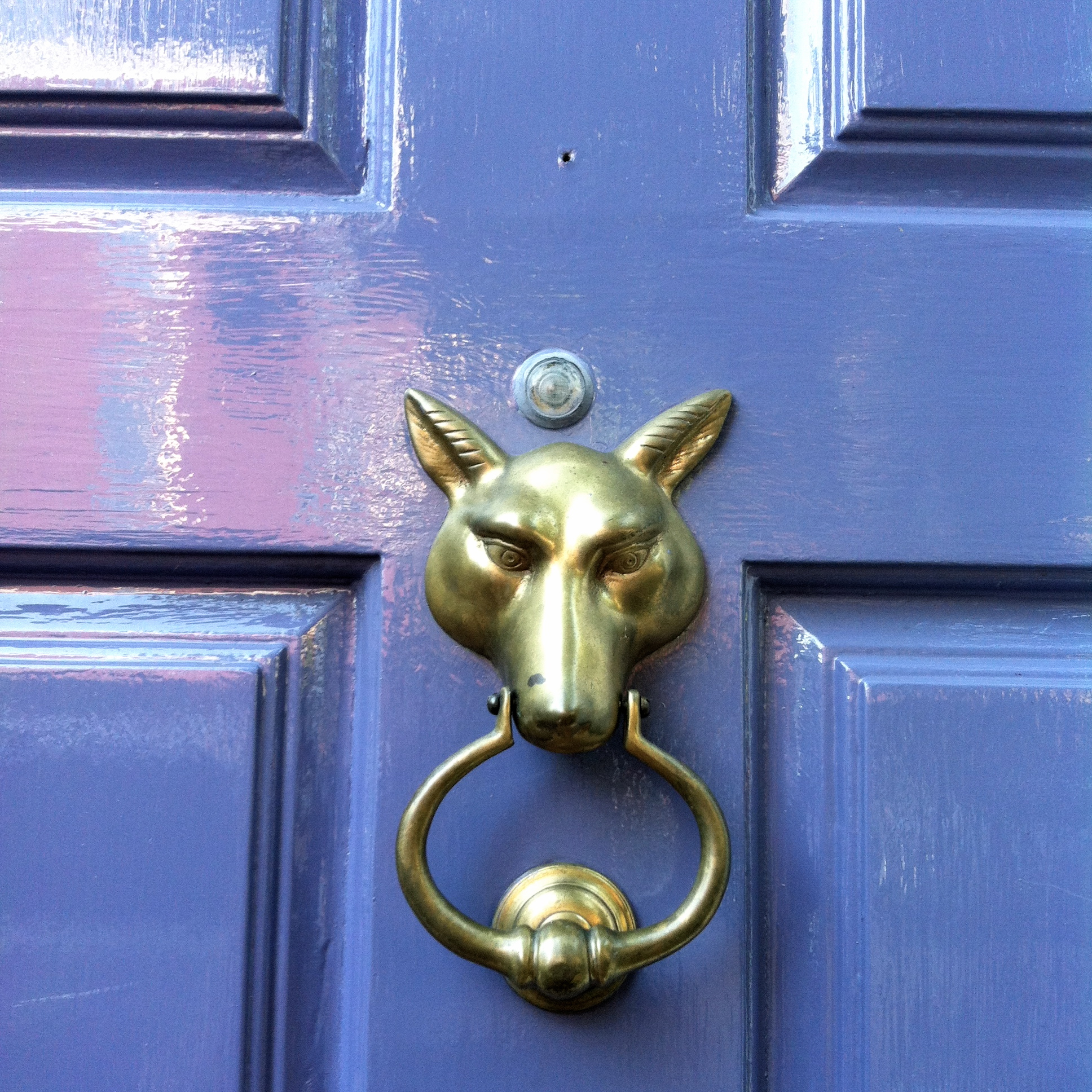 Wolf Door Knocker Image Of Wolf Door Knocker Black And